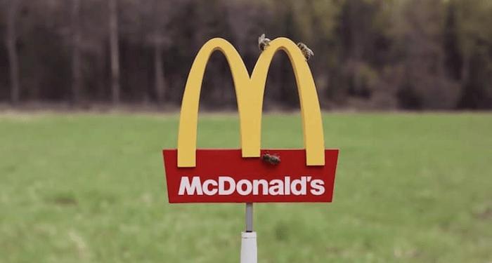 mcdonalds mchive bees restaurant 1