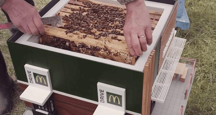 mcdonalds mchive bees restaurant 5