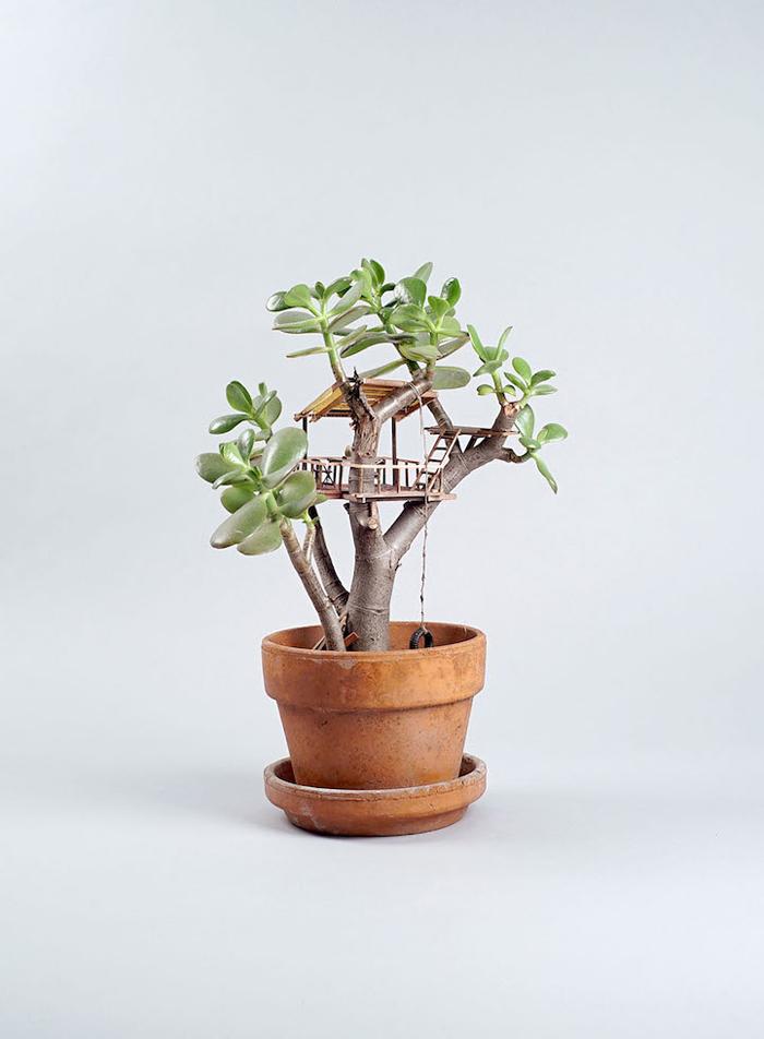 miniature tree houses bonsai tree