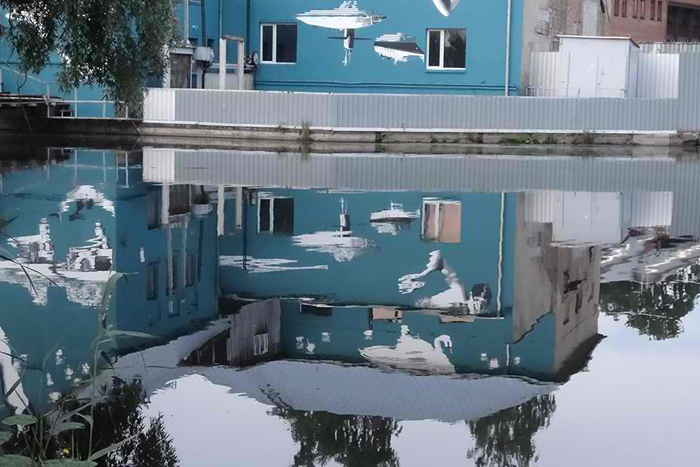 mural reflection on water