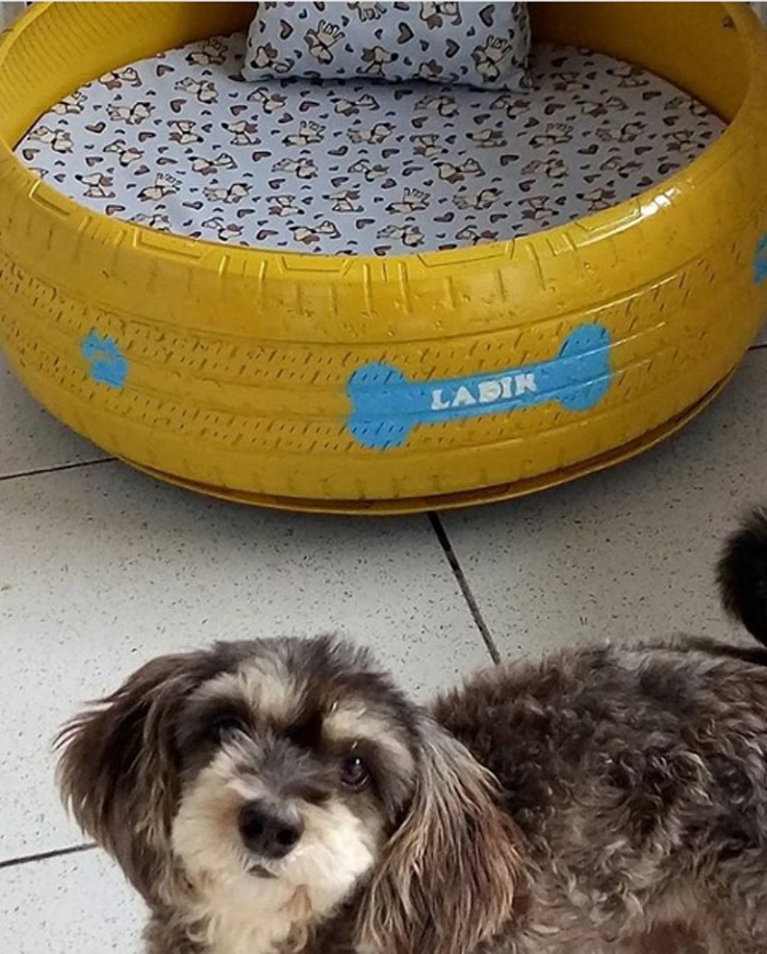 old tires turned into pet beds