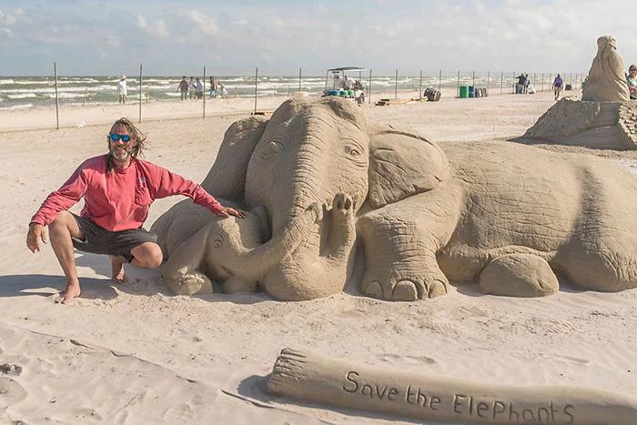 save the elephants paul hoggard