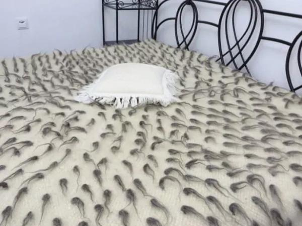 sperm cells bedsheet