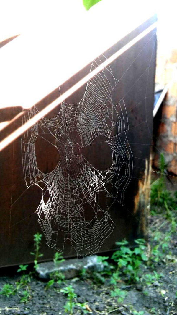 spider web spiderman mask