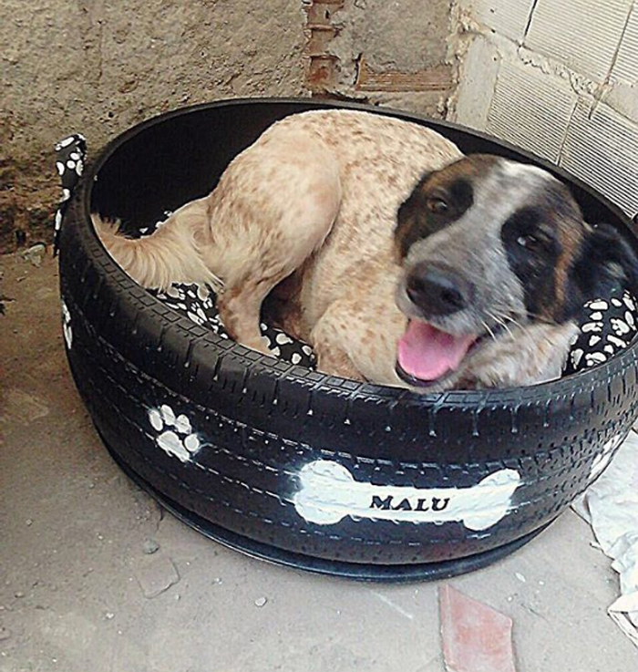 stray dog upcycled tire bed