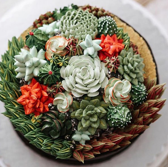 succulent cakes ivenoven