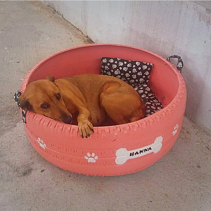 upcycled tires beds for stray dogs