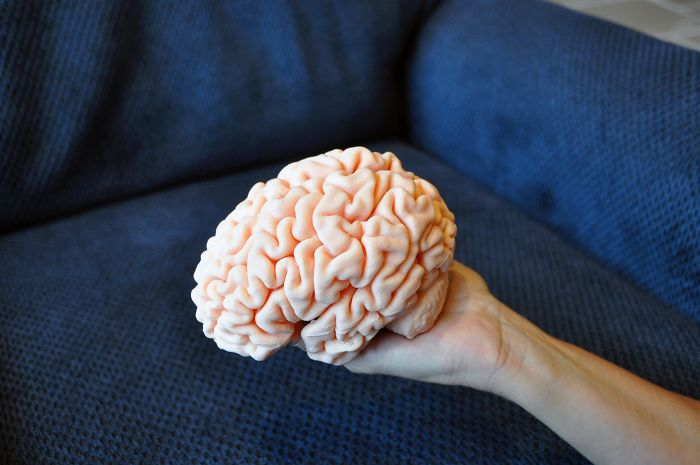 3d printing brilliant creations brain