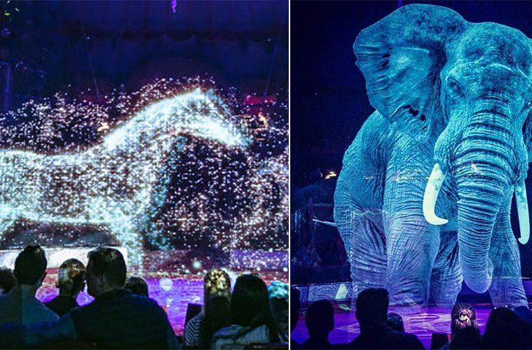 Circus Roncalli animal Holograms