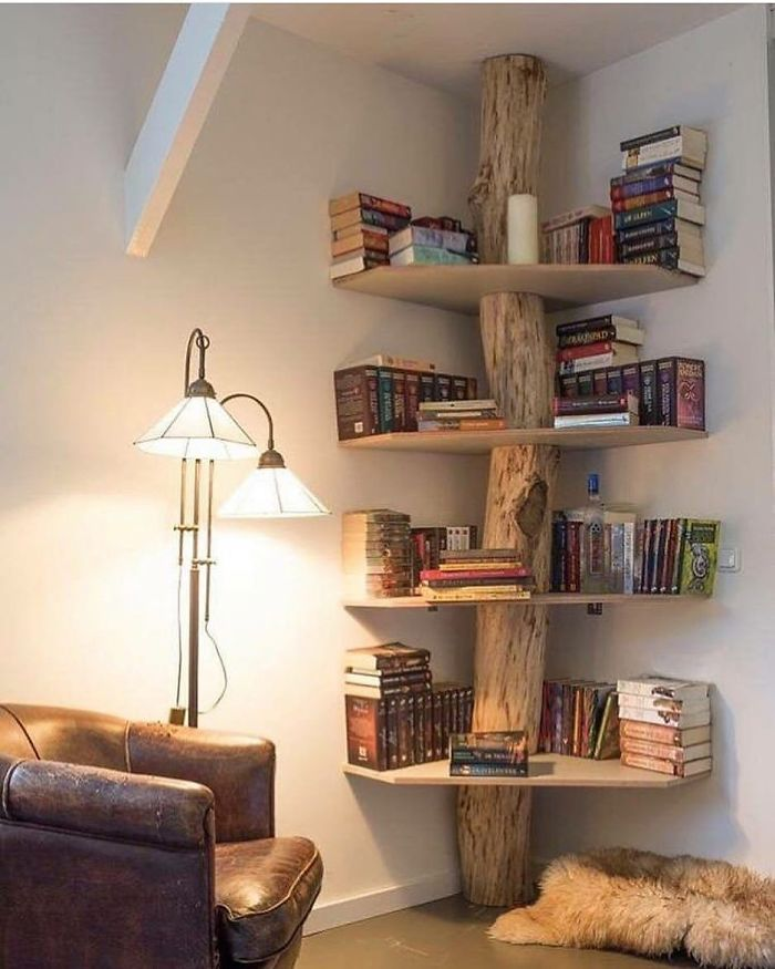 DIY tree bookshelf unique furniture designs