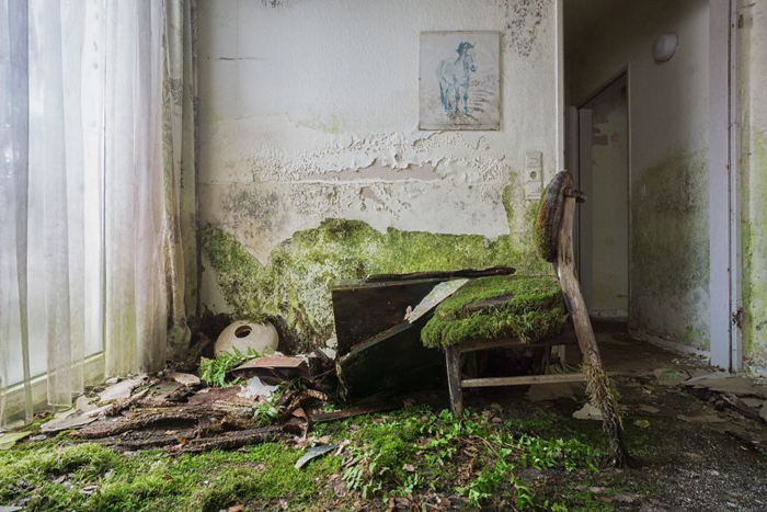 abandoned places mossy chair