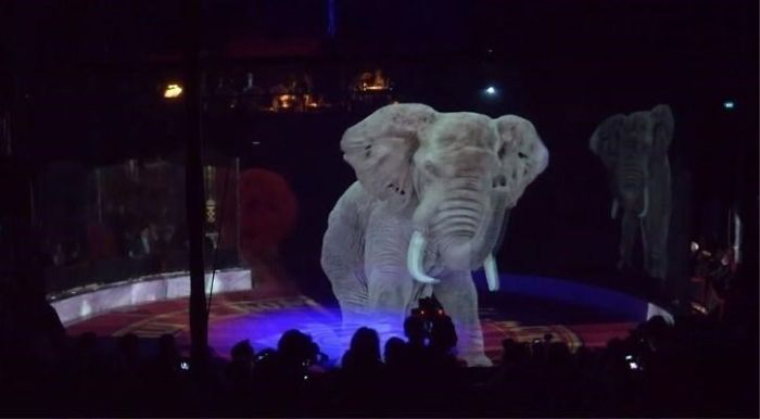 animal holograms elephant circus show