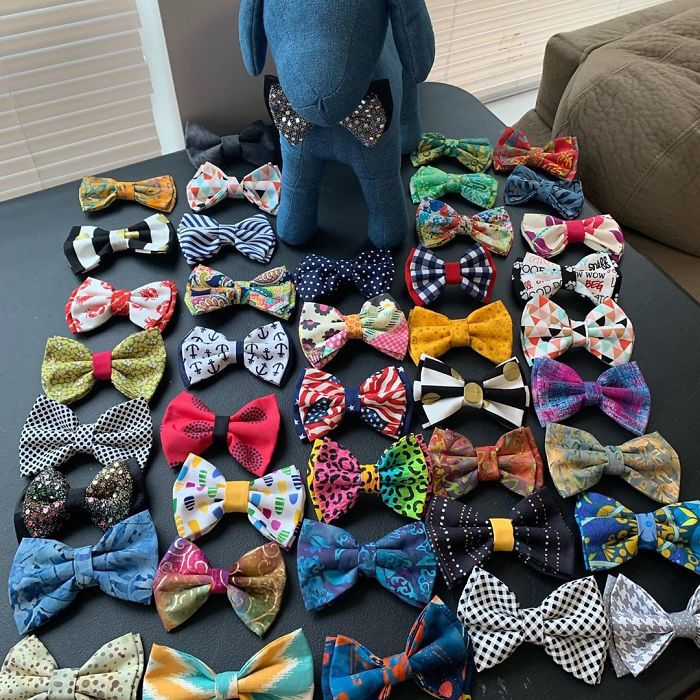 beaux and paws stylish bow ties