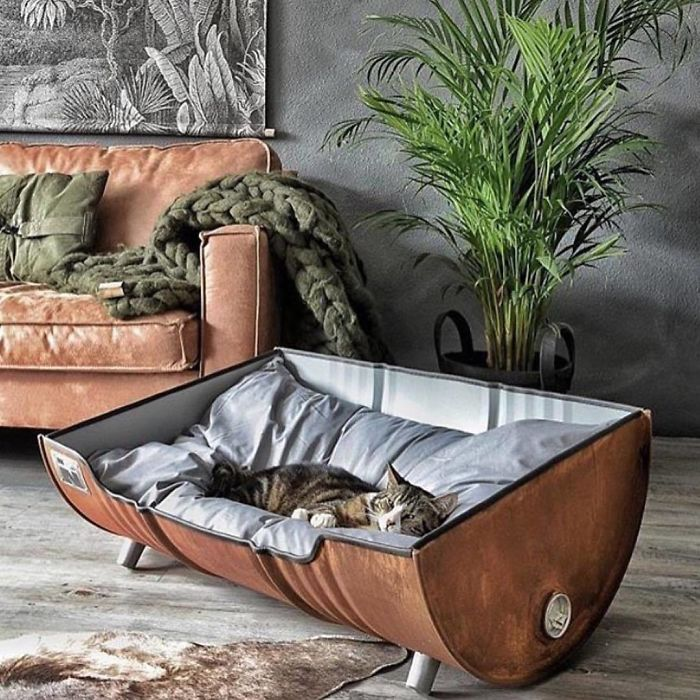 cat pet bed unique furniture designs