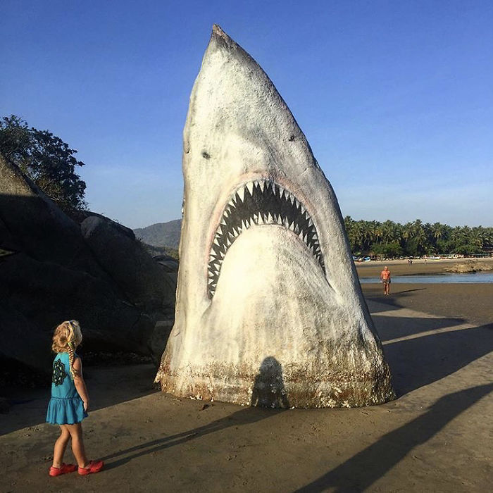 child looking at great white shark jaws rock spray paint graffiti jimmy swift