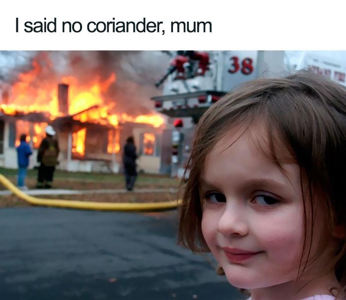 coriander haters funny memes arsonist kid