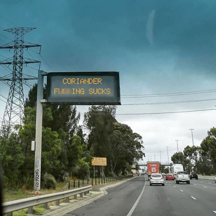 coriander haters funny memes eye street sign