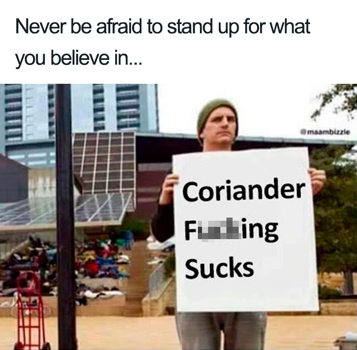 coriander haters funny memes protest sign