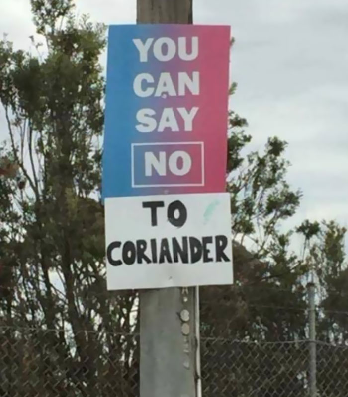 coriander haters funny memes say no