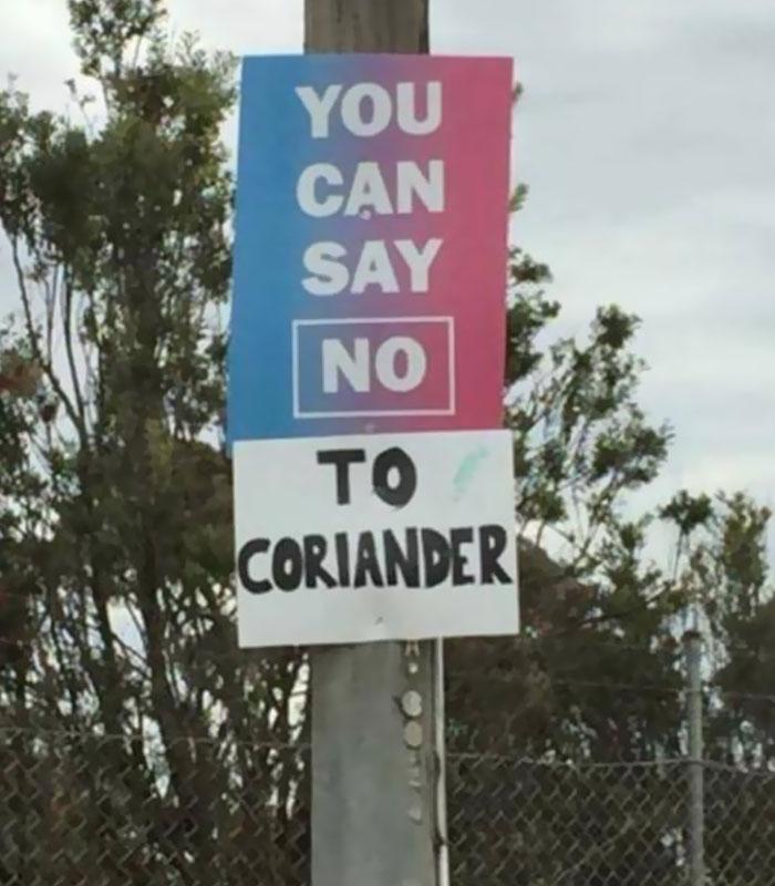 coriander haters funny memes say no