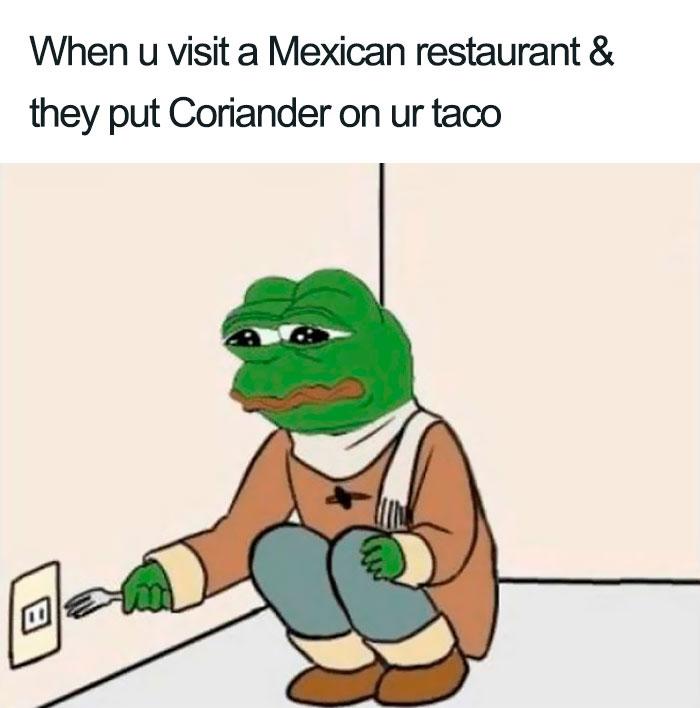 coriander haters funny memes taco