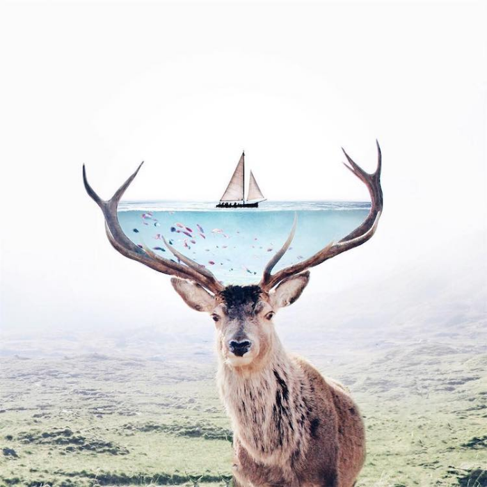 deer horns basin of ocean surrealism photography luisa azevedo