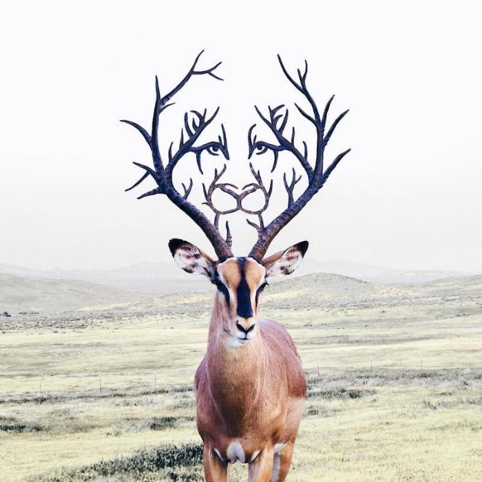 deer lion horns surrealism photography luisa azevedo
