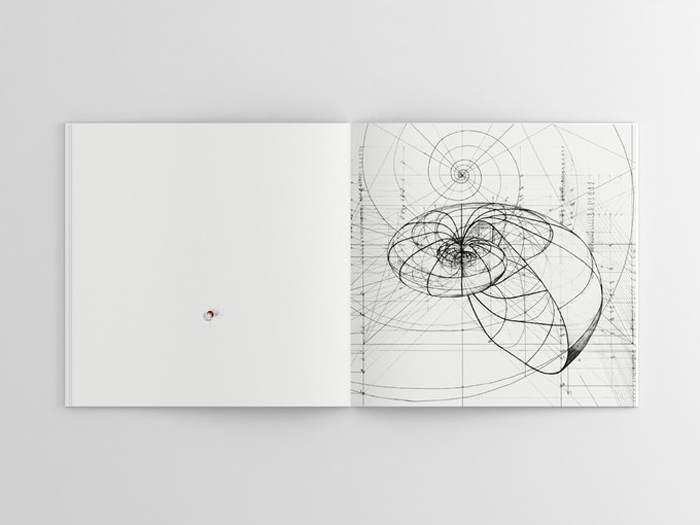 golden ratio coloring book chambered nautilus shell