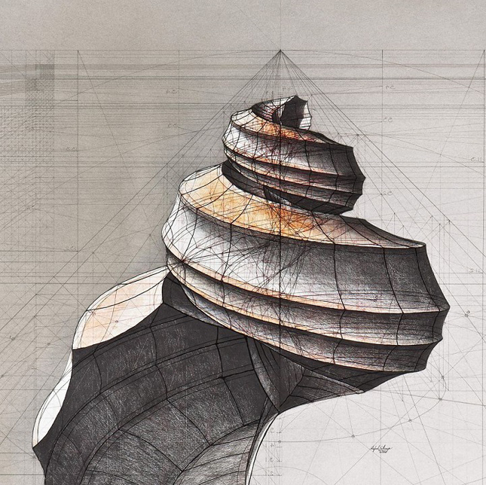 golden ratio illustrations fibonacci sequence spiral