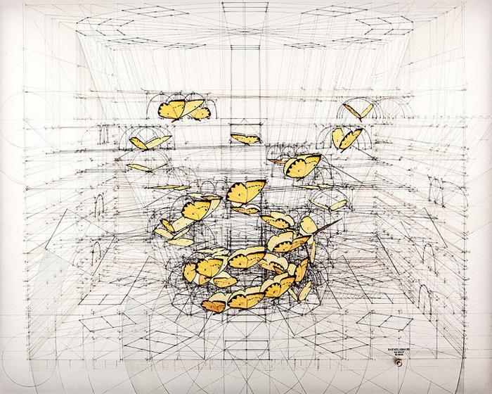 golden ratio illustrations phoebis triple helix
