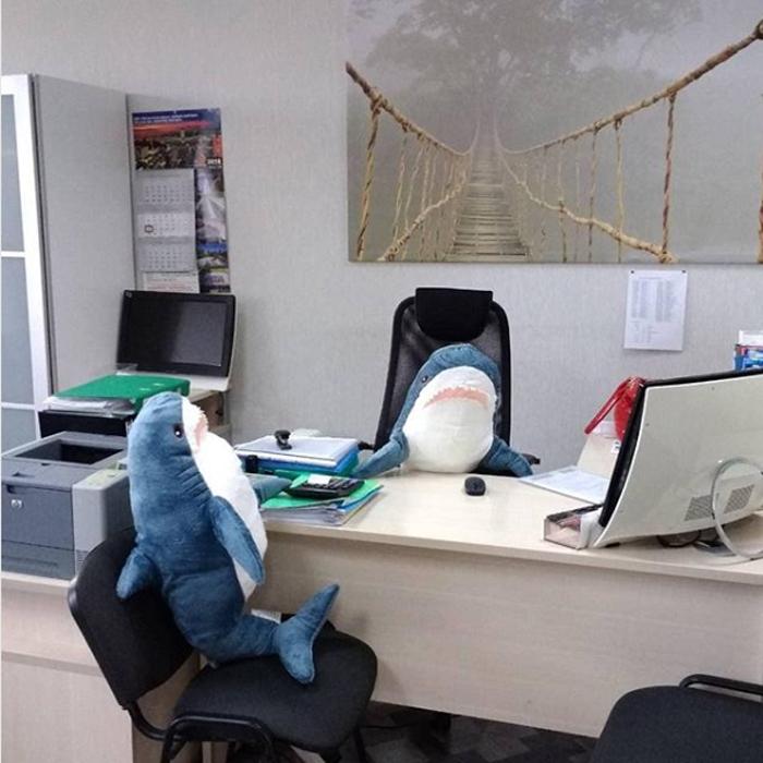 ikea plush shark toy akula