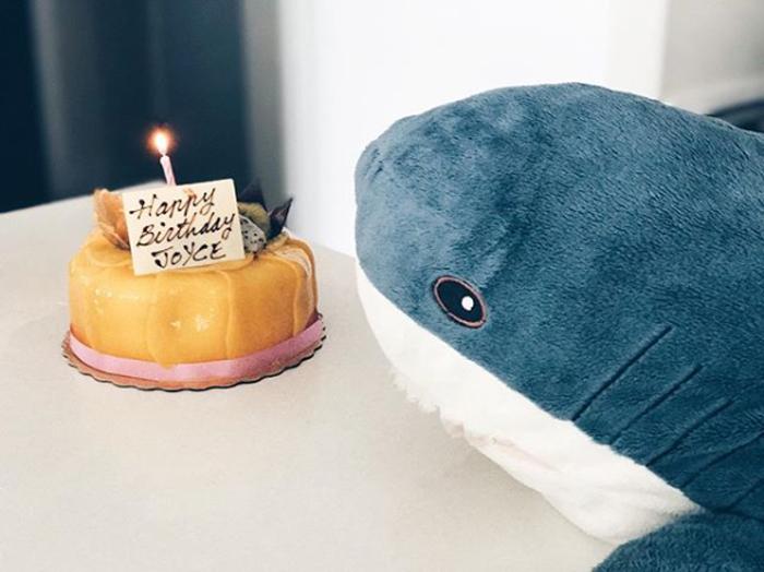 ikea plush shark toy birthday cake
