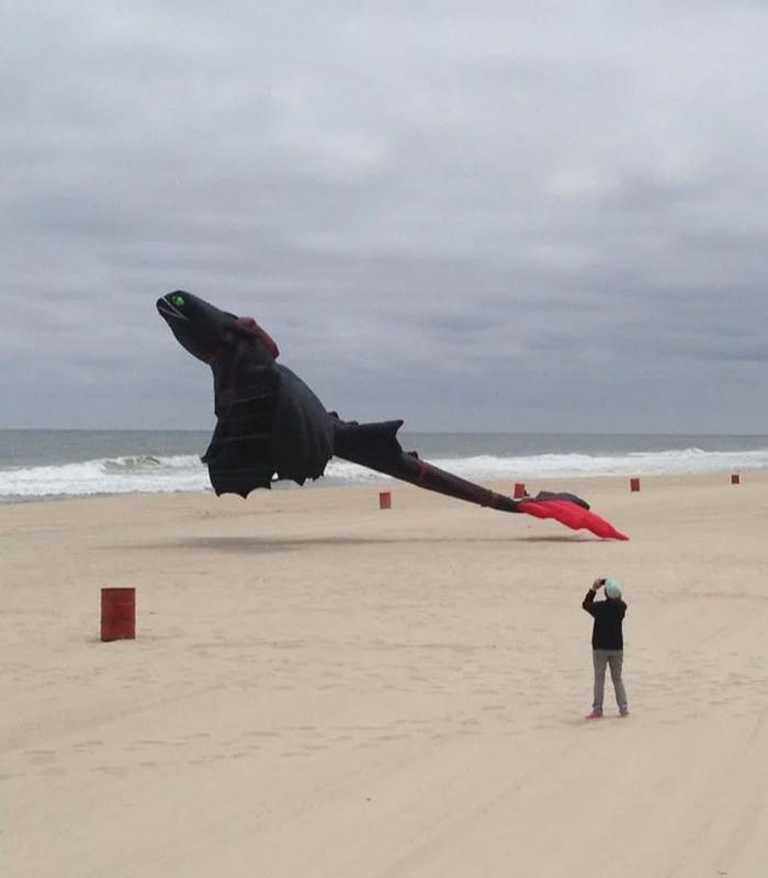 interesting beach things - toothless kite