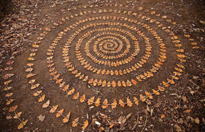 james brunt creates ephemeral mandalas using fallen leaves