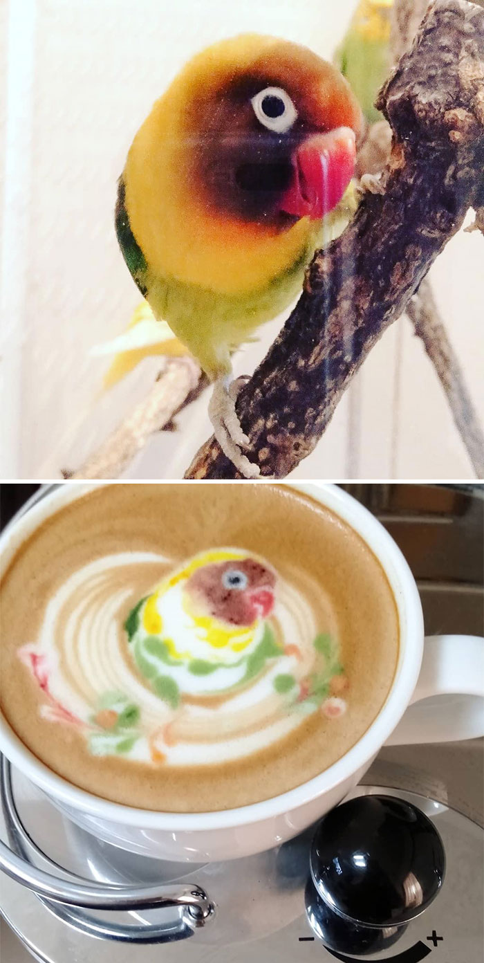 ku-san bird latte art boko