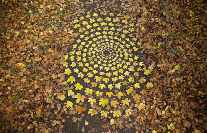 mesmerizing leaf spirals by james brunt land art