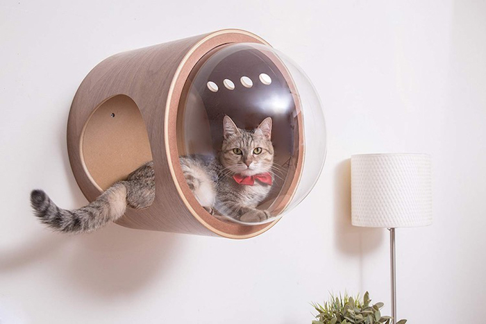 myzoo studio spaceship-inspired cat beds