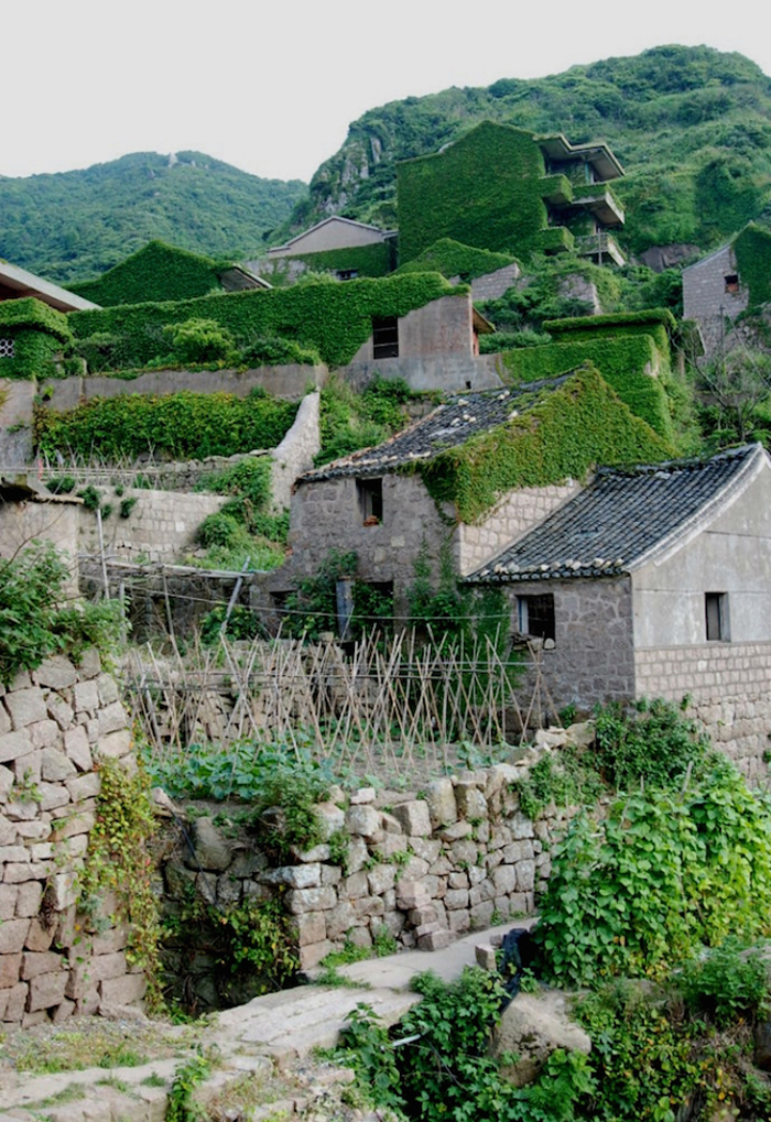 nature covers abandoned fishing village