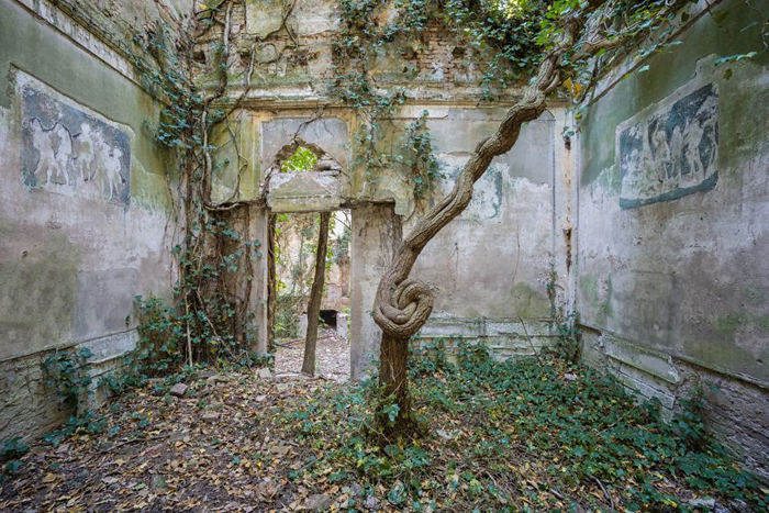 nature taking over abandoned places