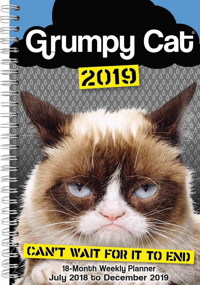 Is it friday yet meme Easy E19M Grumpy Cat A5 Diary 2018 2019 Ca