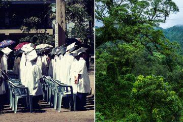 Philippines graduation planting trees