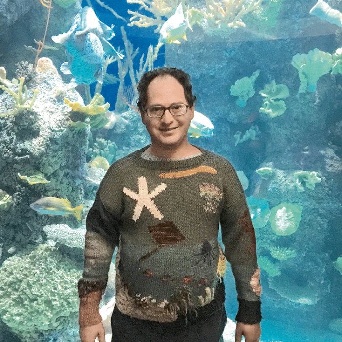 sam barsky postcard sweaters aquatic