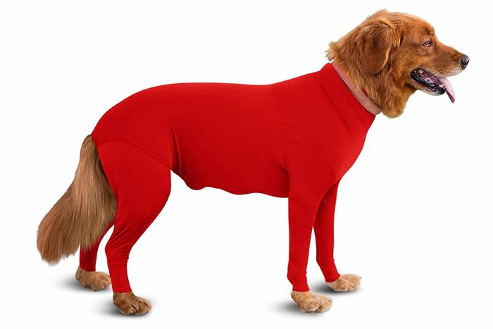 shed defender dog onesie amazon