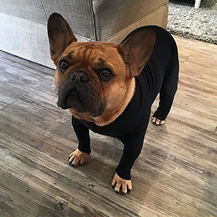 shed defender dog onesie for all breeds