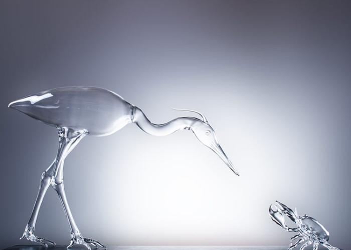 simone crestani blown glass sculptures preying bird
