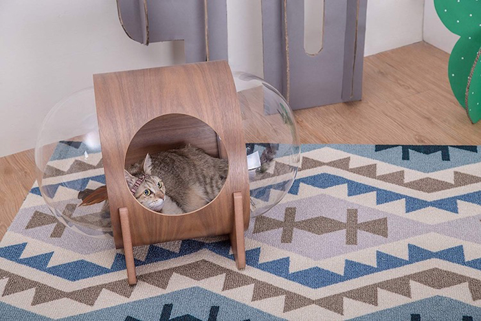 spaceship-inspired cat beds alpha walnut