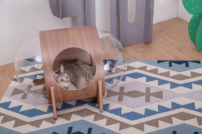 spaceship-inspired cat beds alpha walnut