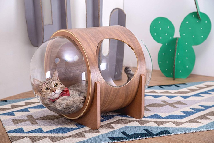 spaceship-inspired cat beds alpha