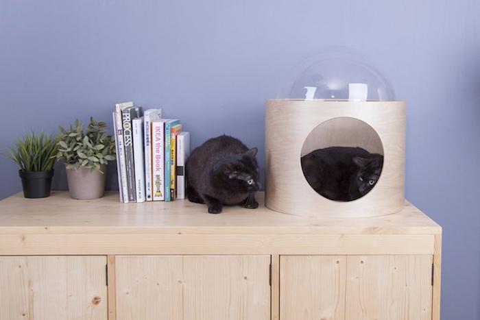 spaceship-inspired cat beds beta basswood