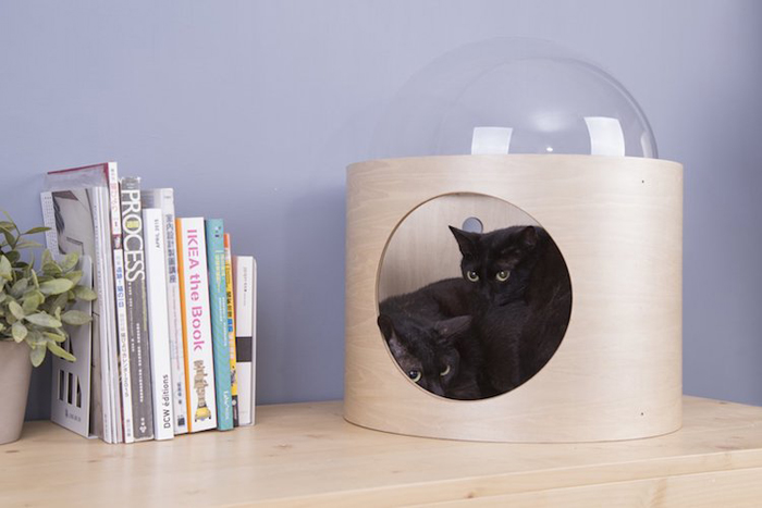 spaceship-inspired cat beds beta